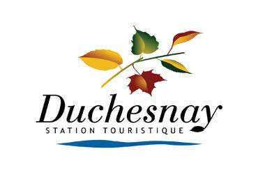 Template Logo Wordpress 0016 Duchesnay Couleur