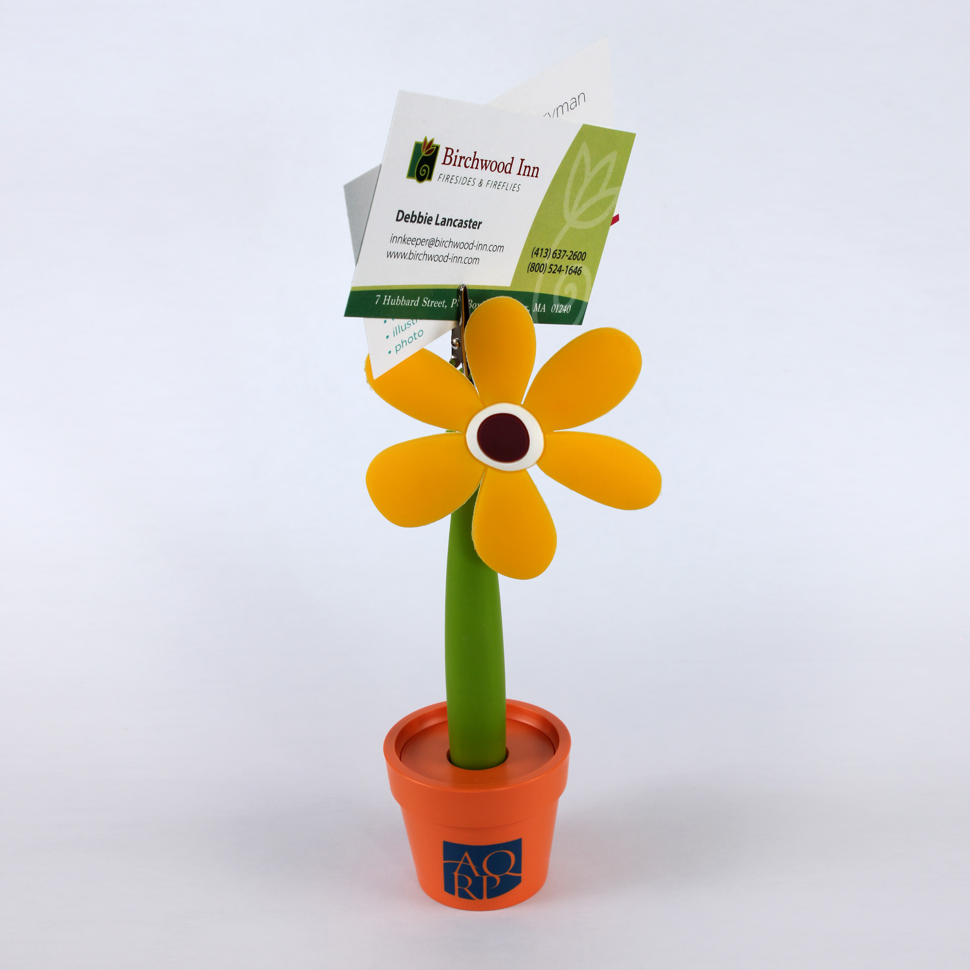 Flowerpot Img 9824