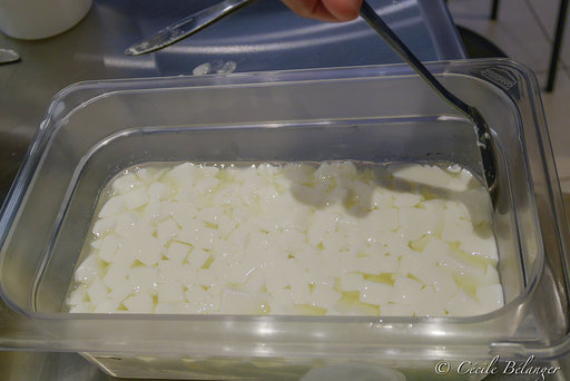 Fabrication De Fromage 4